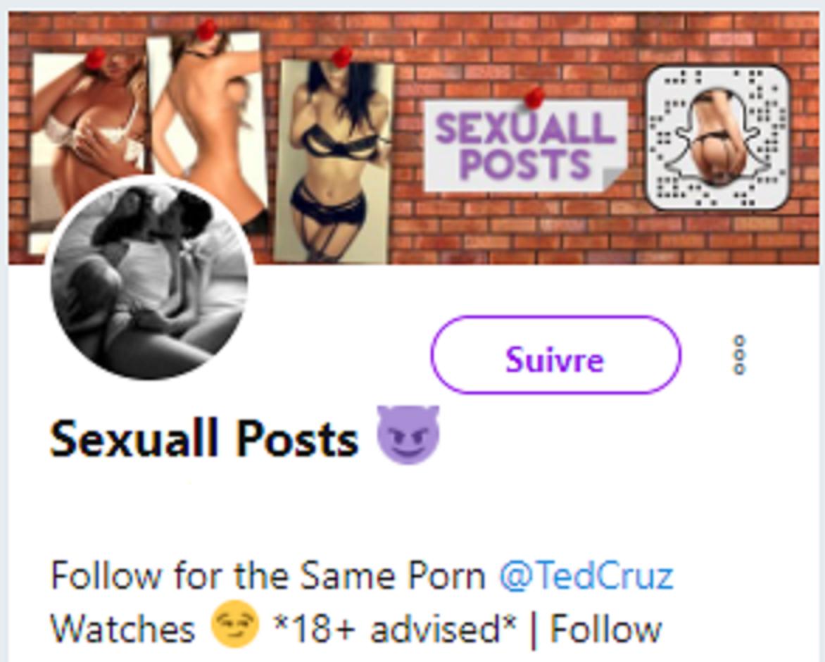 Boulette : le compte Twitter du sénateur du Texas Ted Cruz «like» un contenu pornographique