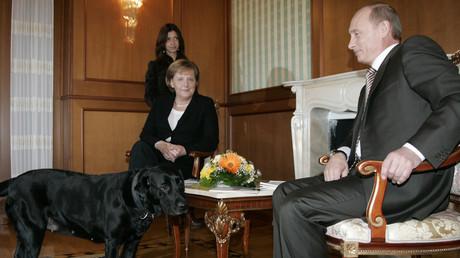 Le magazine allemand Focus s'excuse après avoir traité Vladimir Poutine de «chien»