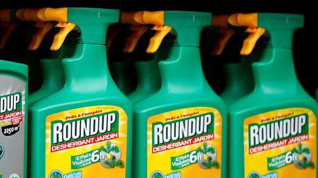Le désherbant Roundup de Monsanto dans un magasin.