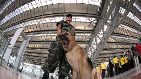Agent de sécurité dans un aéroport de Bangkok en 2006 (image d'illustration).