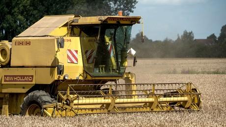 Un moissonneuse batteuse dans un champ de blé dans le nord de la France (illustration).