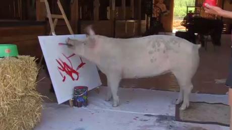 Un Cochon qui peint comme Picasso