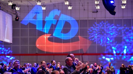 Congrès de l'AfD en décembre 2017