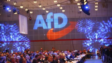 Peter Boehringer, nouveau président de la commission des Lois au Bundestag