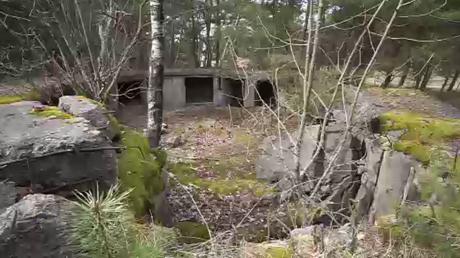 «Vends bunker nazi d'occasion» : un complexe de bunkers allemands est mis en vente en Lituanie