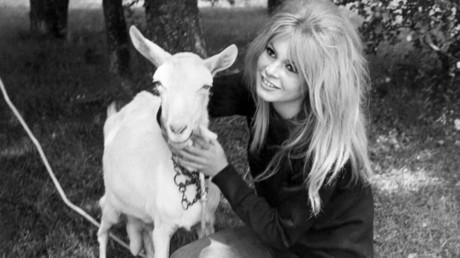 La comédienne Brigitte Bardot et une chèvre dans les années 1960.