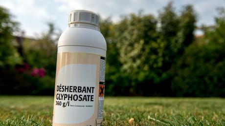 Une bouteille de glyphosate dans un champ en France