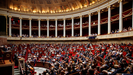 L'Assemblée nationale, illustration