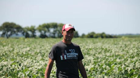 Le 6 juillet 2018, le fermier Terry Davidson traverse ses champs de soja à Harvard, dans l'Illinois, le jour même où la Chine a imposé des droits de douane visant le soja importé des Etats-Unis.