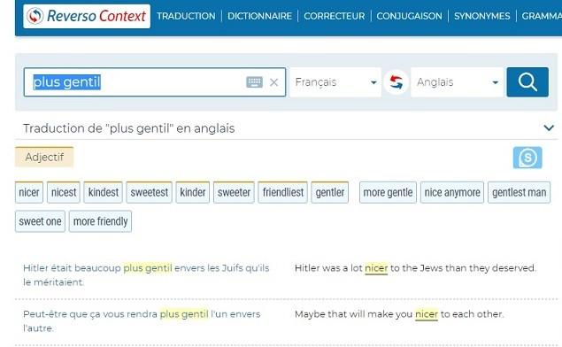 Erreur de «filtre» ? Le site Reverso propose des traductions antisémites et racistes