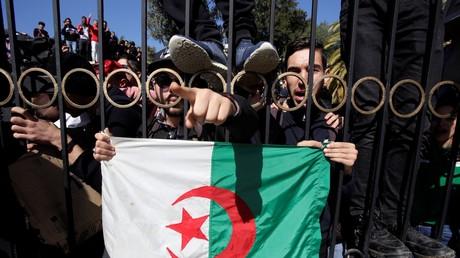 Des étudiants manifestent contre la candidature d'Abdelaziz Bouteflika, le 3 mars 2019, sur le campus d'une université d'Alger.