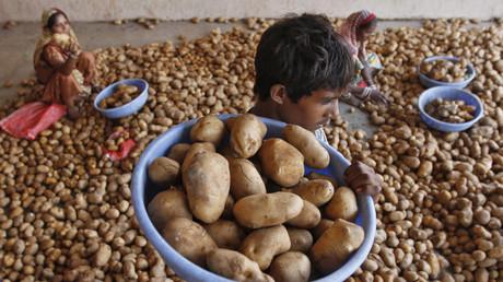 En Inde, Pepsico s'inquiète de l'affaire des producteurs pirates de la patate à chips FC5