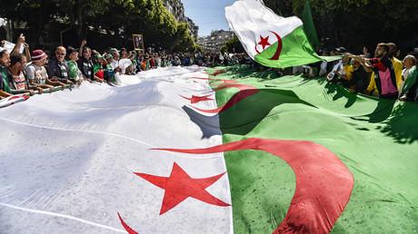 Des Algériens agitent l'emblème national lors d'une manifestation contre le pouvoir, le 31 mars 2019 à Alger (image d'illustration).