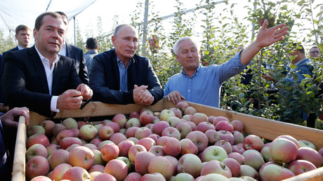 Vladimir Poutine et Dmitri Medvedev visitent une exploitation agricole près de  Stavropol, le 9 octobre 2018 (image d'illustration).