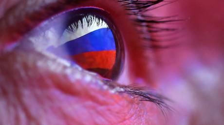 Désinformation étrangère : où en est le «système d'alerte rapide» mis en place par l'UE ?