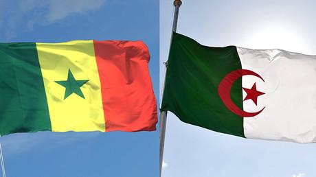 L'Algérie remporte la Coupe d'Afrique des nations  (EN CONTINU)