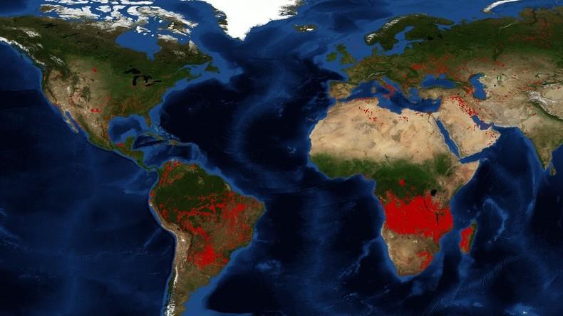 Feux de forêt en Amazonie et en Afrique subsaharienne ...