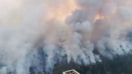 Brésil : l'Amazonie ravagée par de violents incendies