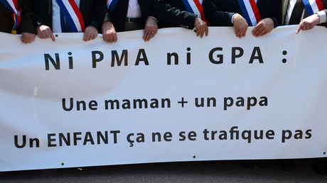 Manifestation contre la PMA en mai 2013 (image d'illustration).