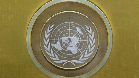 Emblème des Nations Unies aux quartiers généraux de New York, septembre 2017 (image d'illustration).