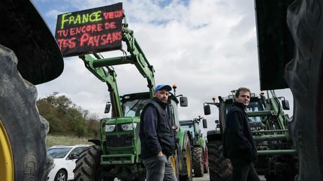 Des agriculteurs bloquent l'autoroute près de Mulhouse le 8 octobre 2019 (image d'illustration).