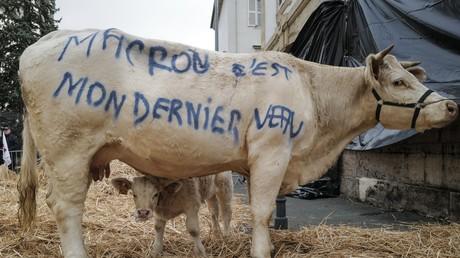 Manifestation d'agriculteurs à Vesoul (Haute-Saône) le 22 octobre. Un mois plus tard naîtra le groupe d'observation et d'action contre l'agribashing (illustration).