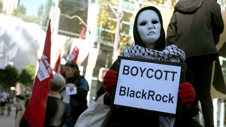 Un manifestant anti-BlackRock, le 6 décembre à San Francisco, aux Etats-Unis (image d'illustration).