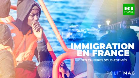 POLITMAG - Immigration en France : des chiffres faux ?