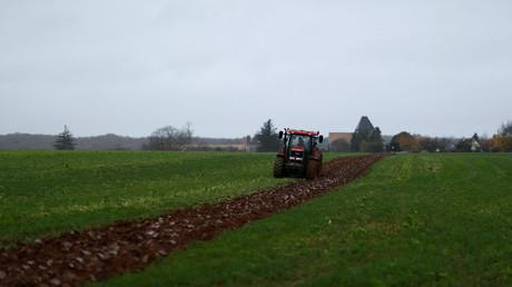 Exploitation agricole en Île-de-France. (Image d'illustration).