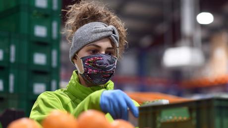 Une étudiante allemande travaillant dans l'industrie agroalimentaire biologique près de Munich, le 1er avril 2020 (image d'illustration).
