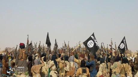 Un groupe affilié à l'Etat islamique photographié à Tongo Tongo au Niger, le 17 mai 2019 (image d'illustration).