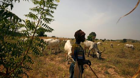 Paiko, Nigéria, le 27 novembre 2018 (Image d'illustration).