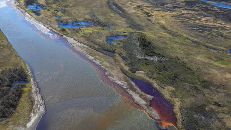 Les conséquences du déversement de carburant en Arctique russe