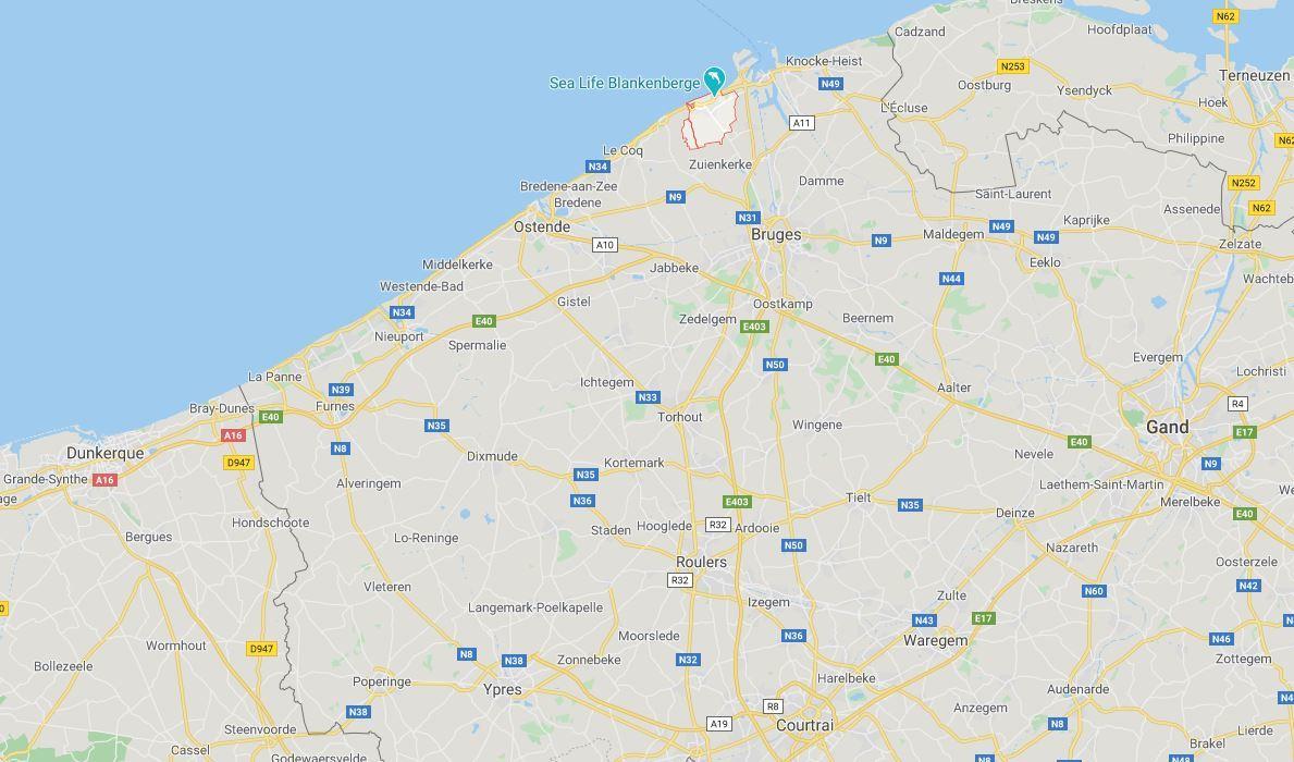 Belgique : après une émeute sur une plage, des maires interdisent les «touristes d'une journée»