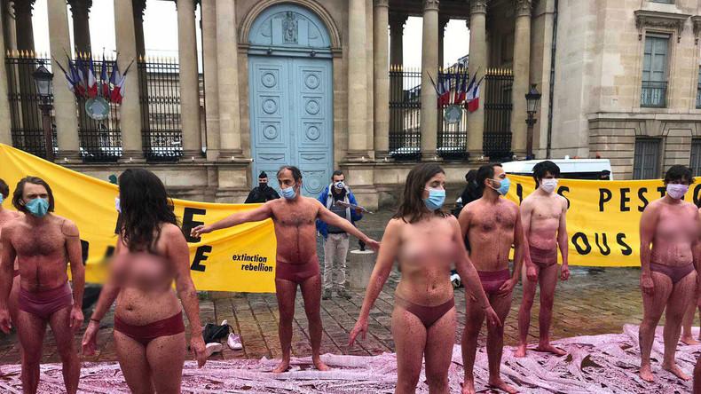 Néonicotinoïdes : action coup de poing d'Extinction Rebellion devant l'Assemblée (IMAGES)