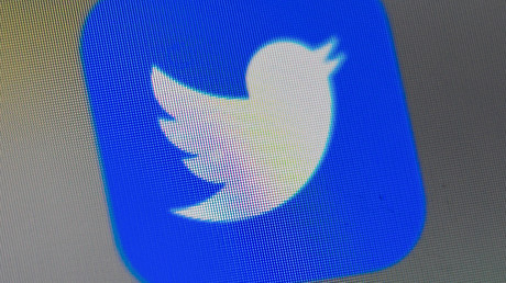 Le logo de l'application Twitter. (Image d'illustration)
