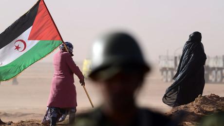 Une femme tient un drapeau du Front Polisario devant un soldat dans le Sahara occidental, le 27février 2016 (image d'illustration).
