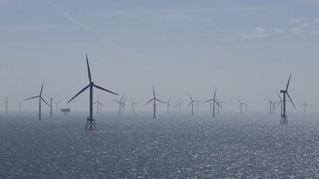 Des éoliennes offshore au large de l'Allemagne, à Heligoland (image d'illustration).