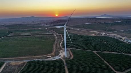 Eolienne au milieu de vignes près de la colonie israélienne d'El Rom sur le plateau du Golan annexé par Israël (image d'illustration).