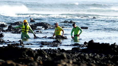 Des secours à côté d'un corps après qu'un bateau de migrants a chaviré près de Lanzarote, en Espagne, le 25 novembre 2020 (image d'illustration)