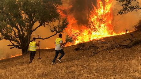 Des individus luttent contre un incendie à Iboudraren, dans les montagnes kabyles, le 12 août 2021 (image d'illustration).