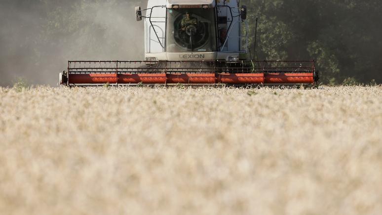 DWN: аграрные компании по всему миру схлестнулись за украинский чернозём