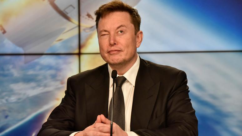 Guardian: Маск представил публике свинью с чипированным мозгом