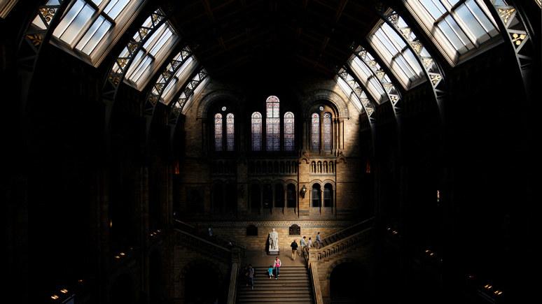 Daily Mail: лондонский музей проверит Дарвина на расизм