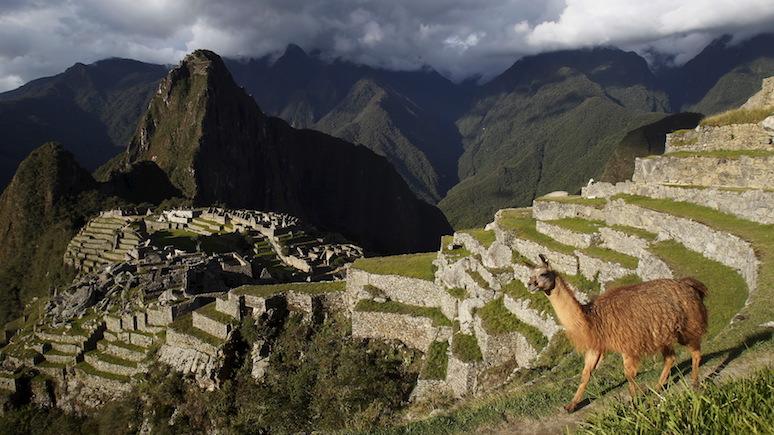 Guardian приехал в Перу с мечтой — руины Мачу Пикчу открыли ради одного японского туриста