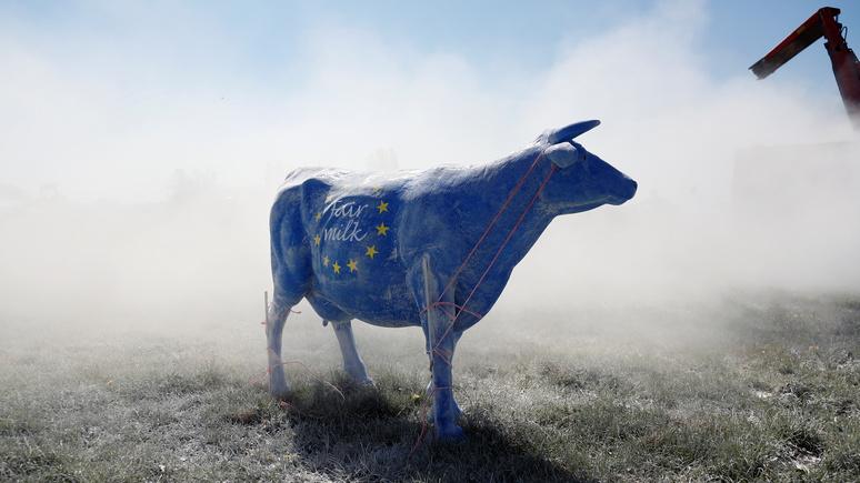Die Zeit: у «неуверенной» в себе Европы есть потенциал стать мировой державой, но уже не при Меркель