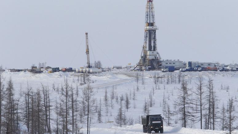 The Times: планы России по освоению арктических богатств беспокоят природоохранные организации