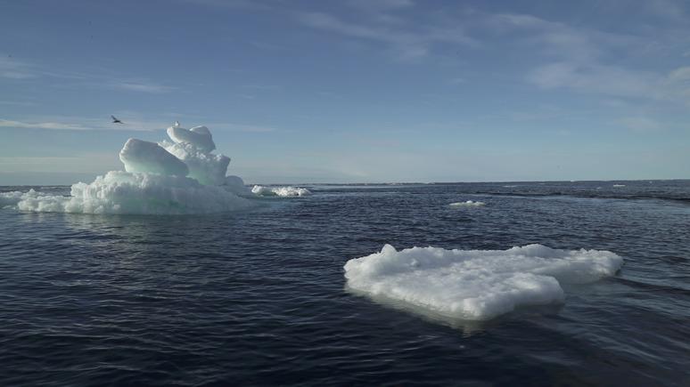 NYT: казалось невообразимым — учёные опасаются, что потепление в Арктике грозит миру катаклизмами