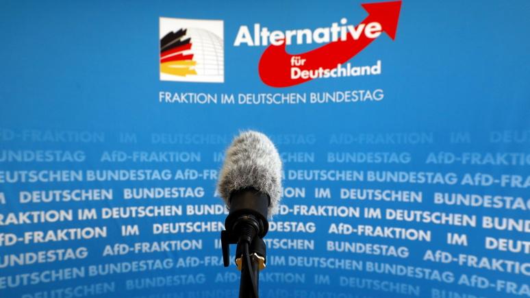 Der Spiegel: за «Альтернативой для Германии» установят слежку