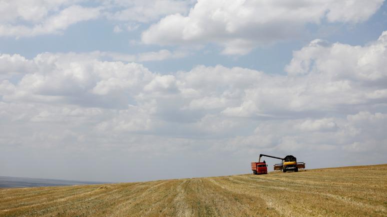 L'Express: Россия стала одним из лидеров мирового сельского хозяйства